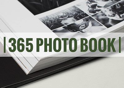 Project 365 Photo Book